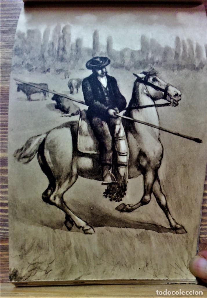 Postales: TRAJES REGIONALES DE ESPAÑA.ANTIGUO ÁLBUM COMPLETO.25 POSTALES ARTÍSTICAS.M.PALOMEQUE - Foto 17 - 222147725