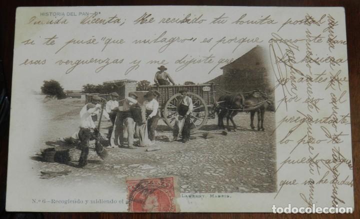 HISTORIA DEL PAN 1ª, FOTO LAURENT, MADRID Nº 6 RECOGIENDO Y MIDIENDO EL GRANO, , CIRCULADA Y SIN DIV (Postales - Postales Temáticas - Étnicas)