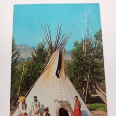 Postales: TARJETA POSTAL. USA. INDIAN MAIDENS. FAMILY. POST CARD. S29206-B. INDIOS. Lote 241979235