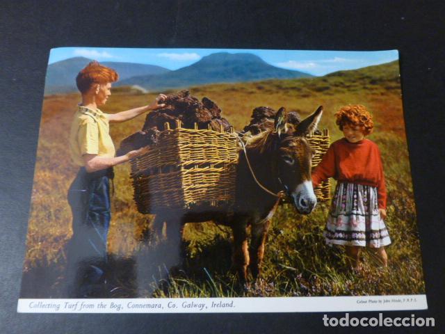 IRLANDA POSTAL ETNICA (Postales - Postales Temáticas - Étnicas)