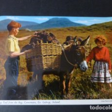 Postales: IRLANDA POSTAL ETNICA. Lote 260771110