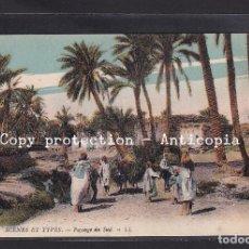 Postales: POSTAL DE ARGELIA - 6595 SCENES ET TYPES - PAYAGE DU SUD. (CAMELLOS). Lote 263132140