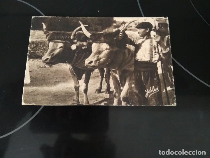 POSTAL TYPE BASQUE / BASERRITARRA CON BUEYES / YOBLED (Postales - Postales Temáticas - Étnicas)
