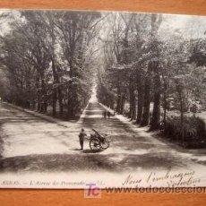 Postales: ARRAS - L´AVENUE DES PROMENADES - CIRCULADA FECHADA EN 1904 (VER FOTO ADICIONAL). Lote 7704494