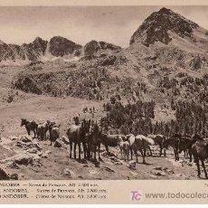 Postales: Nº59 VALLS D'ANDORRA. SERRA DE PESSONS. ALTURA 2.800MTS.. FOTO V.CLAVEROL. Lote 26419668