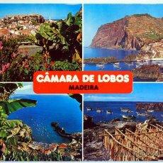 Postales: PORTUGAL. MADEIRA. CÁMARA DE LOBOS.. Lote 29003963