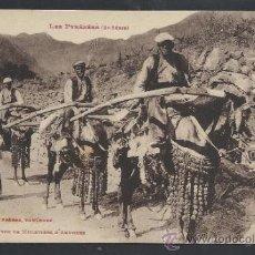 Postales: ANDORRA - 1054 - TYPES DE MULETIERS ..... - LABOUCHE - (11.477). Lote 33907231