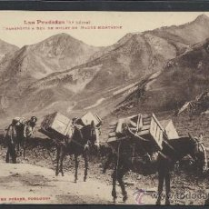 Postales: ANDORRA - 1004 - TRANSPORTS A DOS DE MULET....... - LABOUCHE - (11.479). Lote 33907517