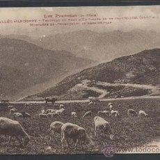 Postales: ANDORRA - 1003 - TROUPEAU AU PONT D´EN VALIRA - LABOUCHE - (11.480). Lote 33907650