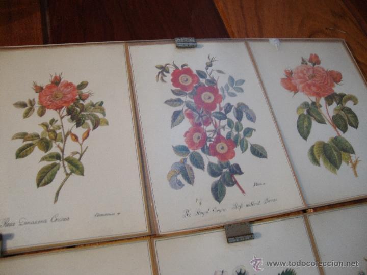 LOTE 12 POSTALES FLORES ANTIGUAS ENMARCADAS (Postales - Postales Extranjero - Europa)