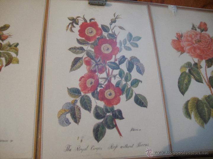 Postales: LOTE 12 POSTALES FLORES ANTIGUAS ENMARCADAS - Foto 6 - 40408970