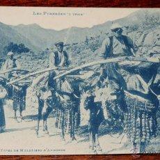Postales: POSTAL DE ANDORRA - LES PYRENEES 3ª SERIE - PHOT. LABOUCHE FR.- 1054 TIPOS MULEROS - NO CIRCULADA.. Lote 49336018