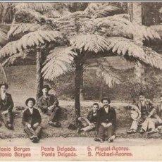 Postales: PORTUGAL S. MIGUEL ACORES PONTA DELGADA JARDIM ANTONIO BORGES. Lote 51607941