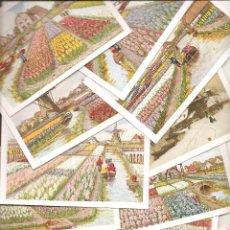 Postales: HOLANDA: 12 POSTALES TÍPICAS. Lote 54431330