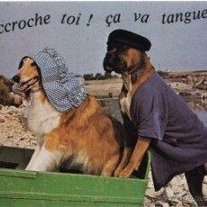 Postales: POSTAL FRANCESA. CIRCULADA 1989. Lote 54992496