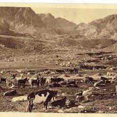 Postales: PS6672 VALLS D'ANDORRA 'PAS DE LA CASA. LA VACADA'. V. CLAVEROL. CIRCULADA. 1944. Lote 56042982