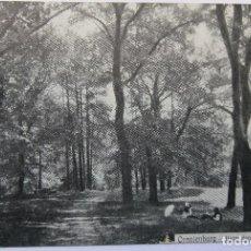 Postales: ORANIENBURG UNTER DEN EICHEN AM BEHNTZLEE 1912. Lote 62448600