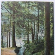 Postales: HARZ BAD HARZBURG PHILOSOPHENWEG 1905. Lote 62454016