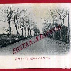 Cartes Postales: POSTAL ORTONA, ITALIA, PASSEGGIATA DELL`OLIVETO, P84026. Lote 62529528