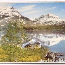 Postales: POSTAL DE SUECIA TAMAÑO GRANDE 22X15 FÖRSOMMAR I RIKSGRÄNSEN, SWEDEN. Lote 65913742