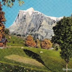 Postales: ITALIA (SIN CIRCULAR) . Lote 107599751