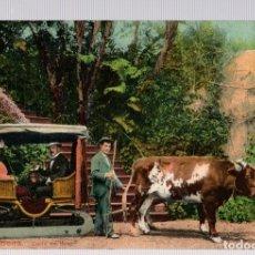 Postales: TARJETA POSTAL MADEIRA. PORTUGAL. CARRO DE BOIS. B.P. 102. Lote 112514146