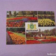 Postales: POSTAL DE HOLANDA. TULIPANES. CIRCULADA 1972.. Lote 118953211