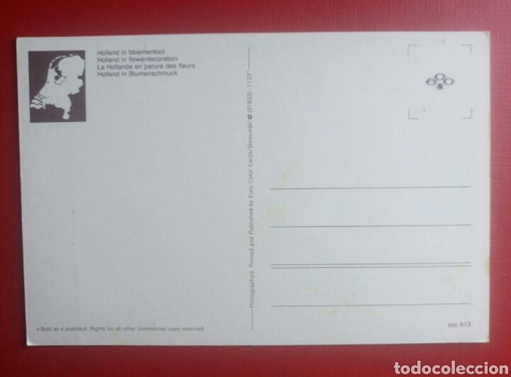 Bonita postal greeting from holland tulipanes h comprar postales postales bonita postal greeting from holland tulipanes holanda en flor foto 2 129558623 m4hsunfo