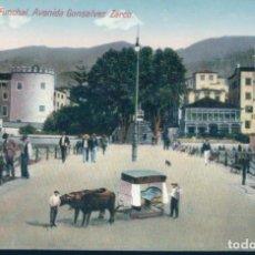 Postales: POSTAL MADEIRA - FUNCHAL - AVENIDA GONSALVES ZARCO - B P. Lote 134098426