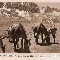 Postales: ANTIGUA POSTAL 293 VALLS ANDORRA PAS DE LA CASA PASTURATGE V CLAVEROL ESCRITA 1954. Lote 140051606