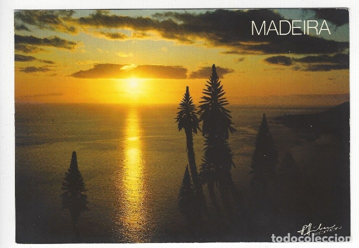 PORTUGAL - MADEIRA .- FUNCHAL.- AMAGNIFICENT SUNSET COLOURS THE BAY. (Postales - Postales Extranjero - Europa)