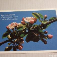 Postales: POSTAL FRANCESA. Lote 177010588