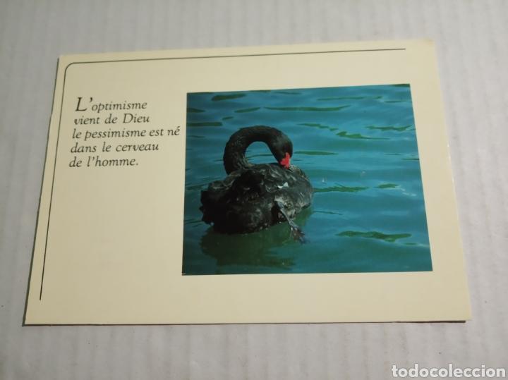 POSTAL FRANCESA (Postales - Postales Extranjero - Europa)