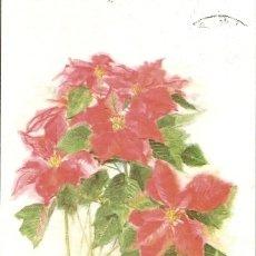 Postales: ALEMANIA & CIRCULADO, SALUDOS DE WEIHNACHTSSTERN, BAD SASSENDORF A BELECKE (8764) . Lote 183274142