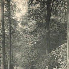 Postales: ESNEUX - TILFF UNE DREVE DU CHÂTEAU NEEF. Lote 185659178