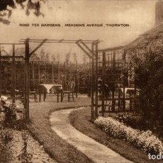 Postales: ROSE TEA GARDENS, MEADOWS AVENUE, THORNTON. Lote 187395855