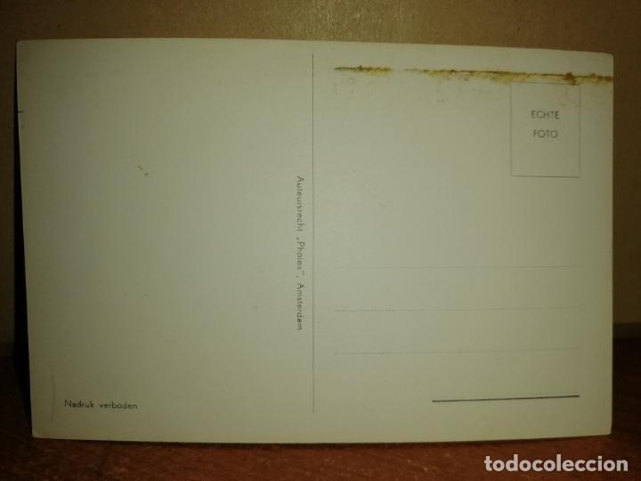 Postales: FOTO POSTAL AMSTERDAM . SINGEL BLOEMENMARKT. S/C - Foto 2 - 192960838