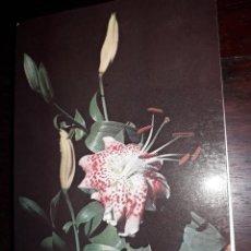 Postales: Nº 36255 POSTAL PORTUGAL FLORES MEDITACION L VEUILLOT. Lote 195281785