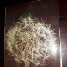 Postales: Nº 36252 POSTAL PORTUGAL MEDITACION FLORES MADAME SWETCHINE. Lote 195282566