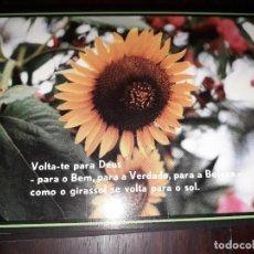 Postales: Nº 36236 POSTAL PORTUGAL FLORES MEDITACION RELIGIOSA. Lote 195288040