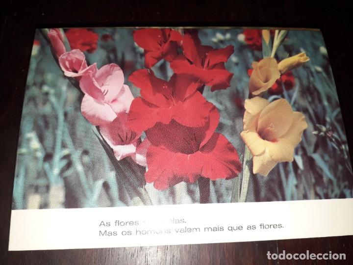 Nº 36234 POSTAL PORTUGAL FLORES MEDITACION (Postales - Postales Extranjero - Europa)