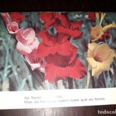 Postales: Nº 36234 POSTAL PORTUGAL FLORES MEDITACION. Lote 195288245