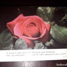 Postales: Nº 36232 POSTAL PORTUGAL FLORES MEDITACION A SILESSIUS. Lote 195288377