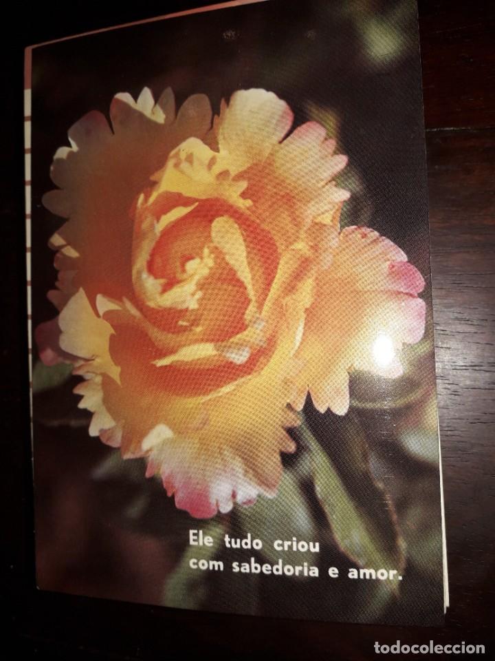 Nº 36230 POSTAL PORTUGAL FLORES MEDITACION (Postales - Postales Extranjero - Europa)
