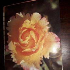 Postales: Nº 36230 POSTAL PORTUGAL FLORES MEDITACION. Lote 195288617