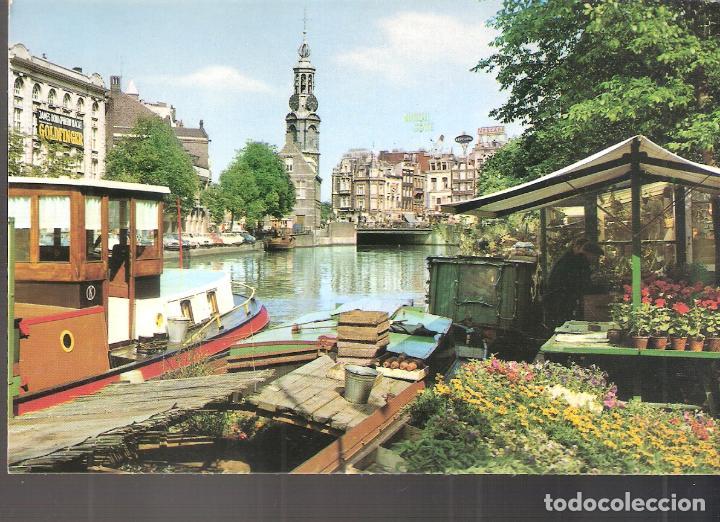 AMSTERDAM. MERCADO DE FLORES DE SINGEL. TORRE DE LA MONNAIE. HOLLAND. HOLANDA. (Postales - Postales Extranjero - Europa)