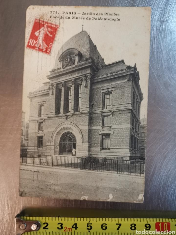 Postales: Postal de París nº274 Jardí des plantes y Musée de Paleonthologie. Sallent. Comellas. 1910s-1920s - Foto 2 - 226124276