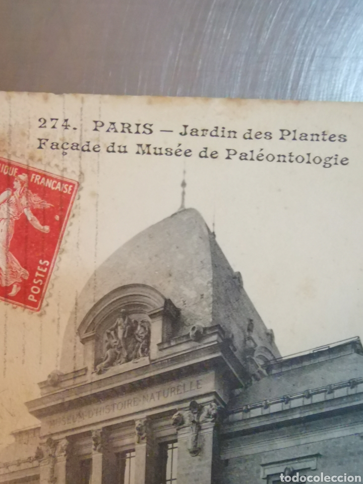 Postales: Postal de París nº274 Jardí des plantes y Musée de Paleonthologie. Sallent. Comellas. 1910s-1920s - Foto 3 - 226124276