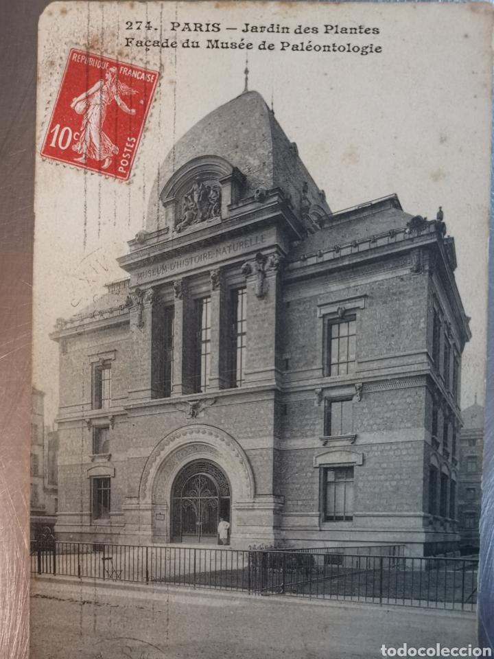POSTAL DE PARÍS Nº274 JARDÍ DES PLANTES Y MUSÉE DE PALEONTHOLOGIE. SALLENT. COMELLAS. 1910S-1920S (Postales - Postales Extranjero - Europa)
