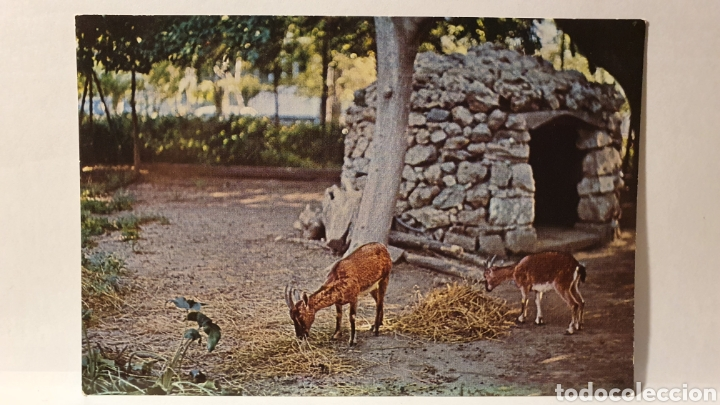 GRÈCE/ XANIA/ SIN CIRCULAR/ (REF.D.167) (Postales - Postales Extranjero - Europa)